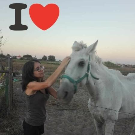 Amor cavalo e dona
